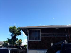hawaii201307-C-01